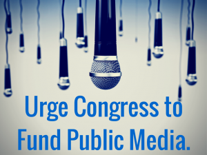 include public media funding in the budget process